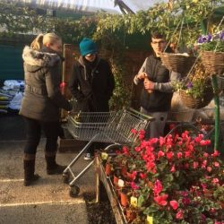 A group at the garden centre